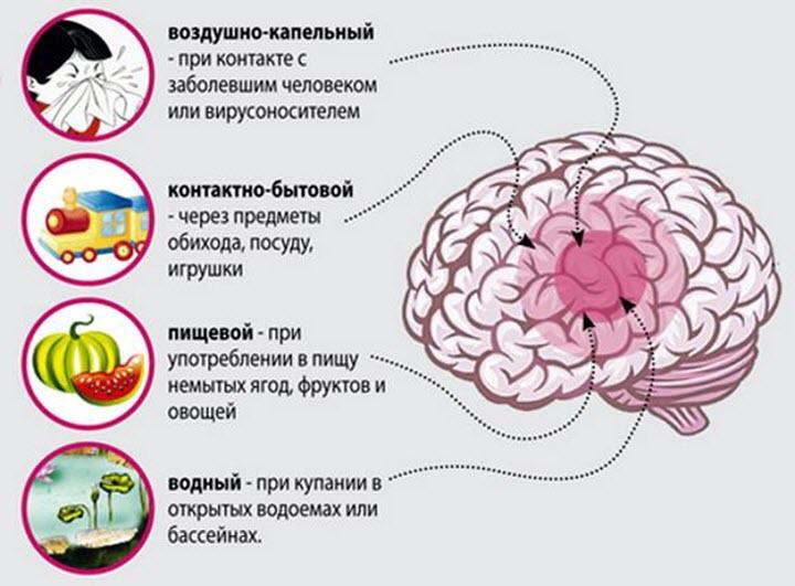 Способы передачи менингита