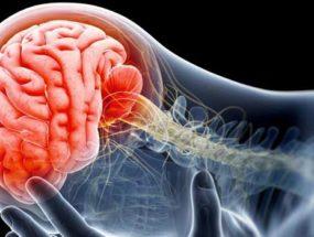Открытая травма черепа