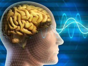 Симптомы кисты головного мозга