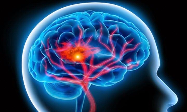Кровоснабжение сосудов головного мозга
