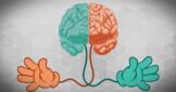 Функциональная асимметрия мозга