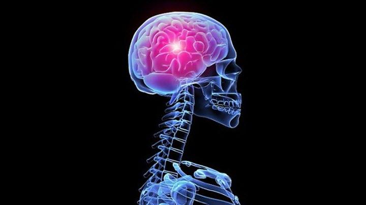 Очаг заболевания в головном мозге